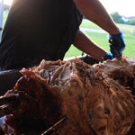 Why a Spit Roast is Best for your Event